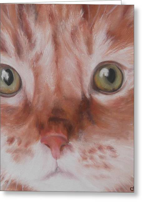 Moggy Greeting Cards - GingeR Greeting Card by Cherise Foster