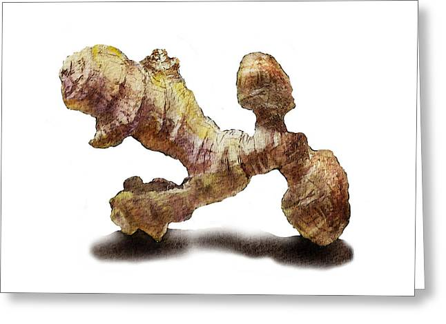 Gift From Nature Greeting Cards - Ginger   Greeting Card by Irina Sztukowski
