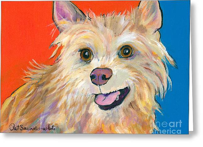 Greeting Cards - Ginger Greeting Card by Pat Saunders-White