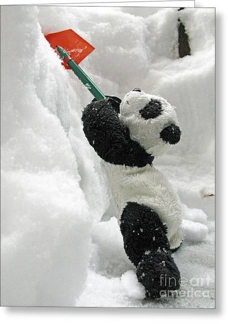 Ginny The Baby Panda In Winter #01 Greeting Card by Ausra Huntington nee Paulauskaite