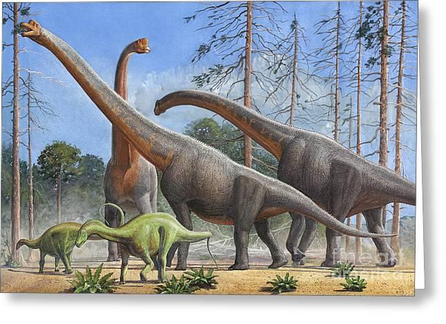Zoology Digital Art Greeting Cards - Giraffatitan And Dicraeosaurus Greeting Card by Sergey Krasovskiy
