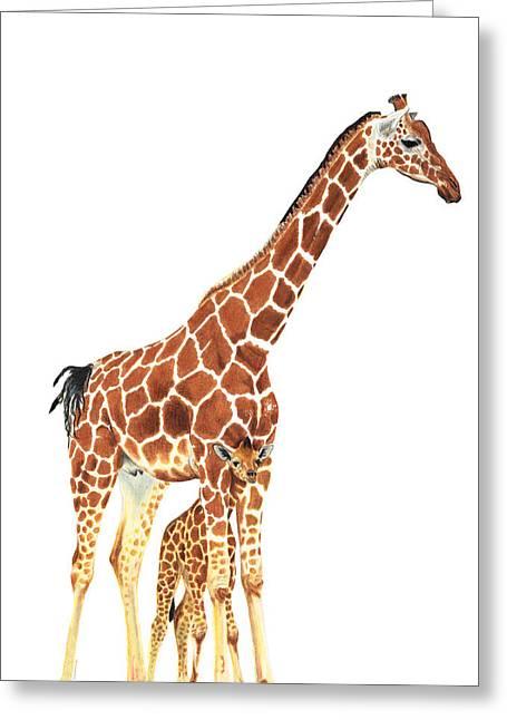 Giraffe Art - A Mother's Love - By Sharon Cummings Greeting Card by Sharon Cummings