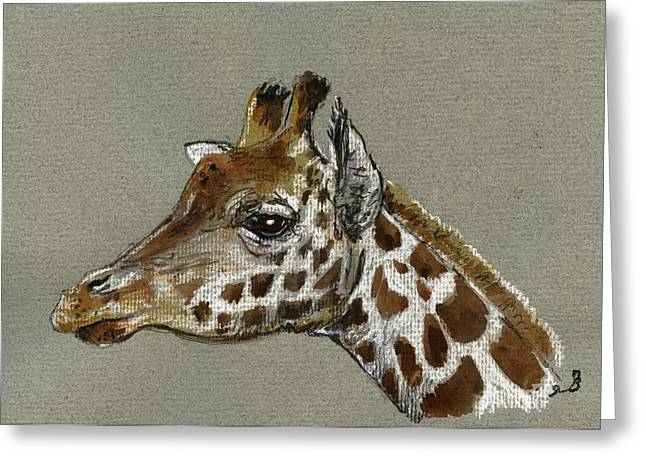 Nature Study Paintings Greeting Cards - Giraffe head study Greeting Card by Juan  Bosco