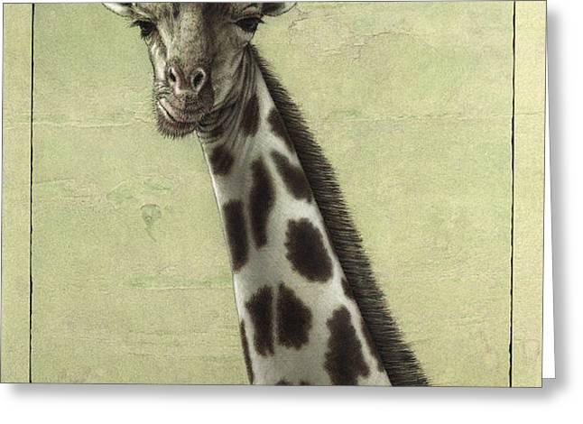 Giraffe Greeting Card by James W Johnson