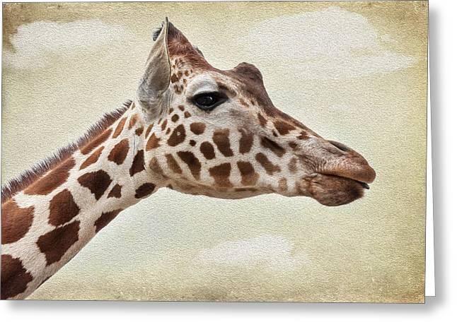 Camel Digital Greeting Cards - Giraffe Greeting Card by Svetlana Sewell