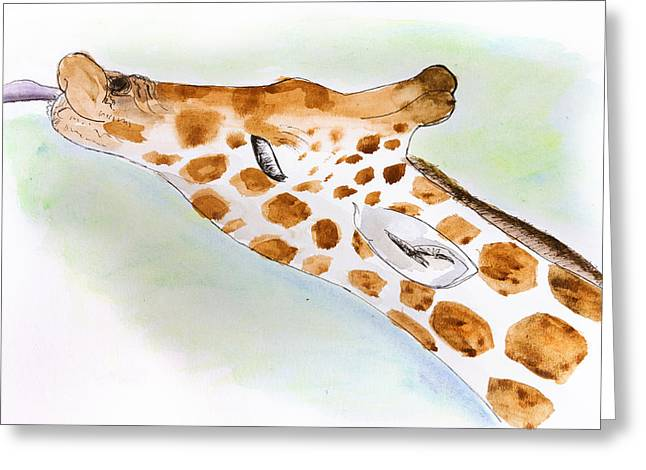 Giraffe With Tongue Out Greeting Card by Pati Photography