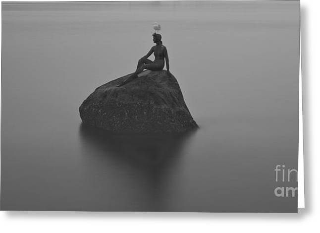 Sittting Greeting Cards - Girl in a Wet Suit Greeting Card by Rod Wiens
