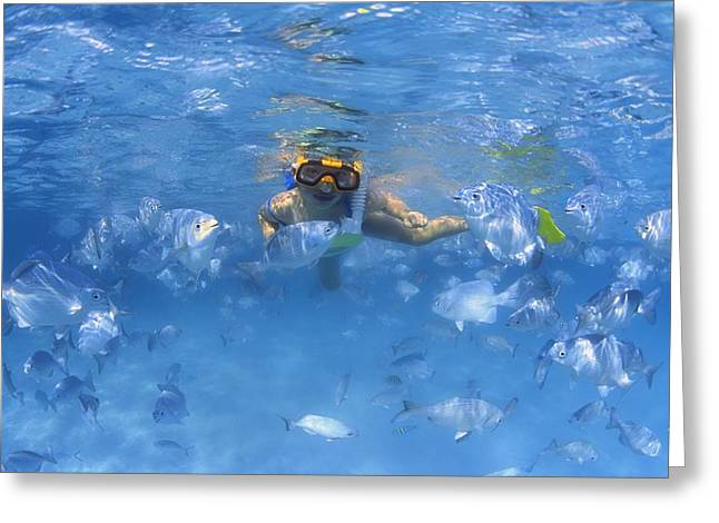 Girl Snorkeling In The Caribbean Greeting Card by Carson Ganci