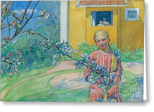 Apple Orchards Greeting Cards - Girl with Apple Blossom Greeting Card by Carl Larsson