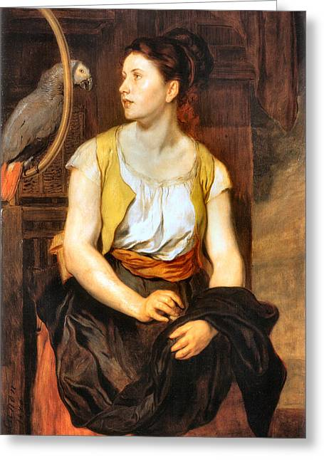 Red Skirt Greeting Cards - Girl With Parrot Greeting Card by Johann Canon