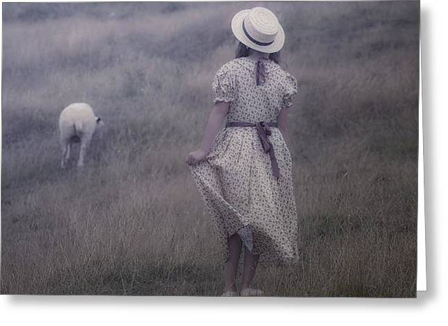 girl with sheeps Greeting Card by Joana Kruse