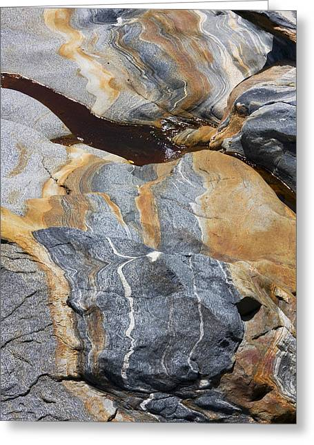 Michael D Friedman Greeting Cards - Glacial Pothole III Greeting Card by Michael Friedman