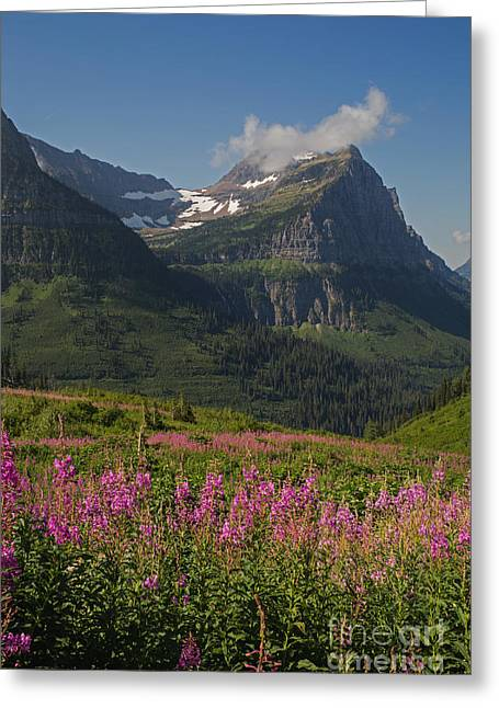 Natural Focal Point Photography Greeting Cards - Glacial Views  Greeting Card by Natural Focal Point Photography