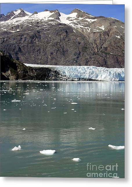 Alaska Photography Greeting Cards - Glacier and icebergs Greeting Card by Sophie Vigneault