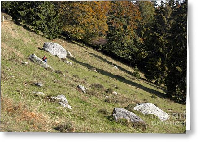 Nature Study Greeting Cards - Glacier Erratics Landscape And Research Greeting Card by Thierry Berrod, Mona Lisa Production