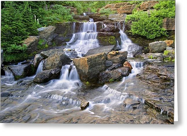 Clean Water Greeting Cards - Glacier Falls Glacier National Park Greeting Card by Rich Franco