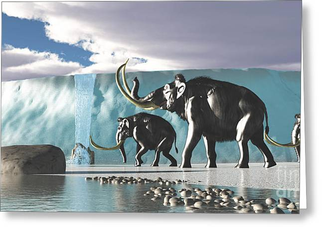 Twinkle Greeting Cards - Glacier Mammoths Greeting Card by Corey Ford