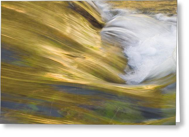 Clean Water Greeting Cards - Glacier Stream Glacier National Park Greeting Card by Rich Franco