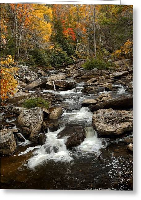 Glade Creek Greeting Card by Daniel Behm