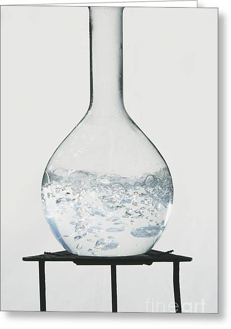 Boiling Greeting Cards - Glass Flask, Bubbling Water Greeting Card by Dave King / Dorling Kindersley / Science Museum, London