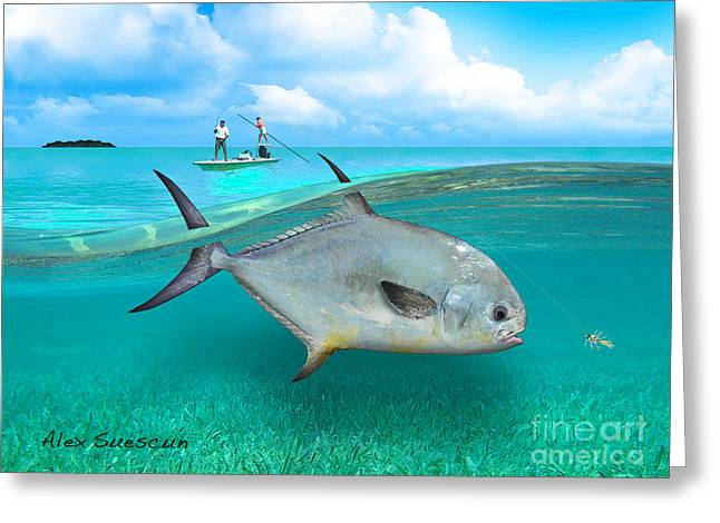 Tarpon Drawings Greeting Cards - Glassy Day Permit Greeting Card by Alex Suescun