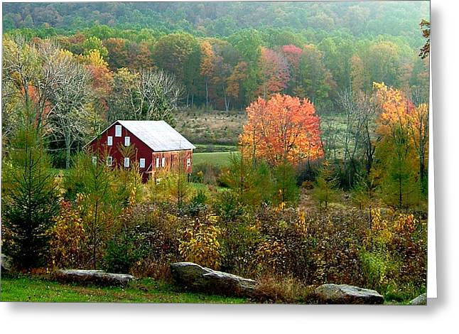Strawberry Hill Greeting Cards - Glatfelter Tree Farm  Greeting Card by L Granville Laird
