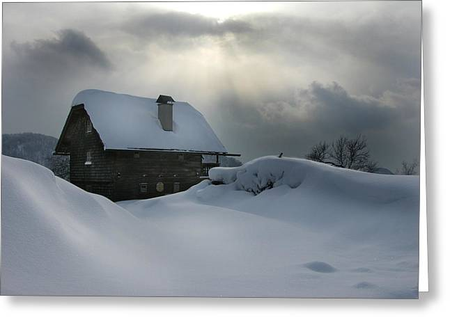 Snowy Day Greeting Cards - Gleam of Light Greeting Card by Martina  Rathgens