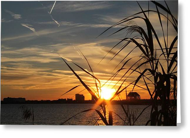 Biloxi Ocean Springs Bridge Greeting Cards - Gleaming Greeting Card by Christina Meadows