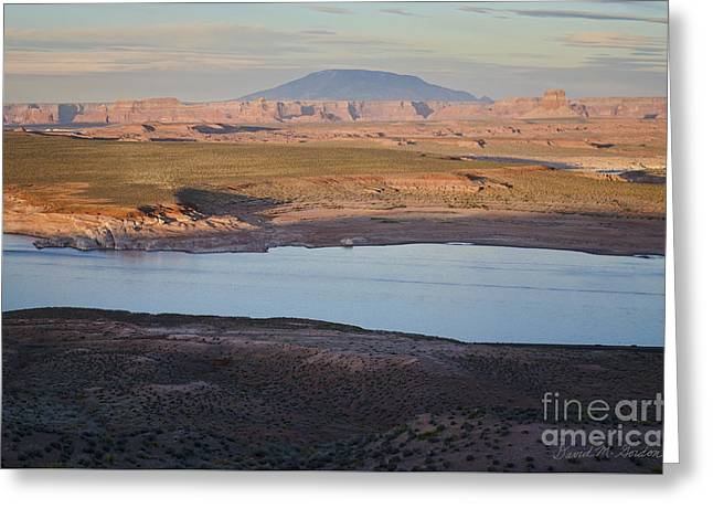 Chromatic Greeting Cards - Glen Canyon and Navajo Mountain Greeting Card by Dave Gordon