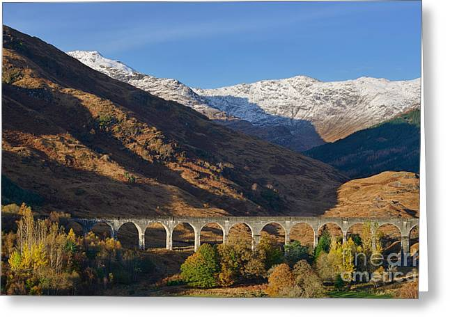 West Highland Greeting Cards - Glenfinnan Viaduct Greeting Card by Rod McLean