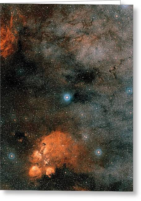 Gliese 667 Triple-star System Greeting Card by Eso/digitized Sky Survey 2. Acknowledgement: Davide De Martin