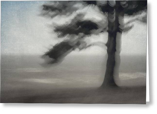 Mystical Landscape Greeting Cards - Glimpse of Coastal Pine Greeting Card by Carol Leigh