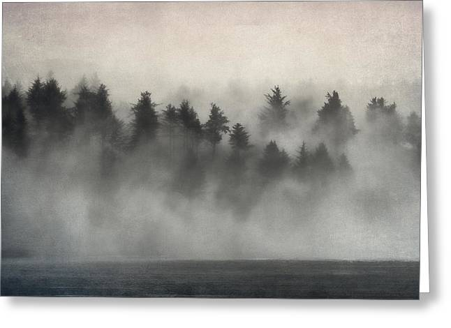 Glimpse Of Mist And Trees Greeting Card by Carol Leigh