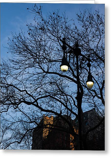 Streetlight Greeting Cards - Glimpses of New York City - Skyscrapers Through the Tree Branches Greeting Card by Georgia Mizuleva