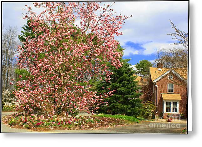 Glimpses Of Spring Greeting Card by Dora Sofia Caputo Photographic Art and Design