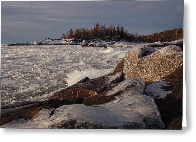 Peterson Nature Photography Greeting Cards - Glitter and Ice Greeting Card by James Peterson