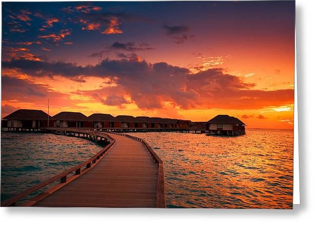 Gorgeous Sunset Greeting Cards - Glorious End of the Tropical Day Greeting Card by Jenny Rainbow