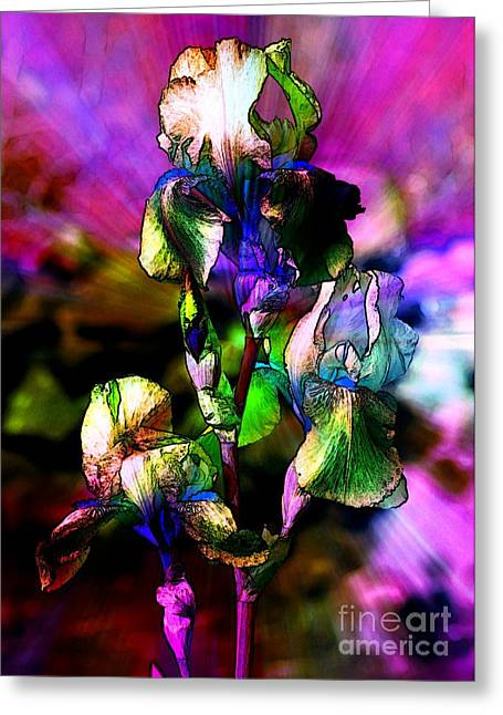 Iris Digital Art Greeting Cards - Glorious Irises Greeting Card by Carol Groenen