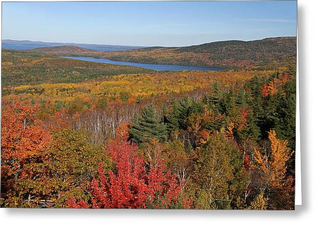 New Greeting Cards - Glorious New England Fall Foliage Colors Greeting Card by Juergen Roth