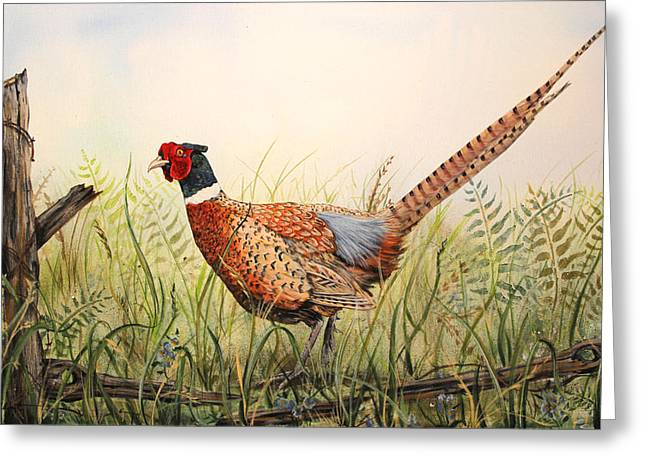 Vine Leaves Greeting Cards - Glorious Pheasant-1 Greeting Card by Jean Plout