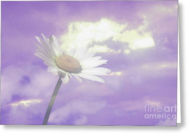 """flora Prints"" Greeting Cards - Glory Clouds Greeting Card by Beverly Guilliams"