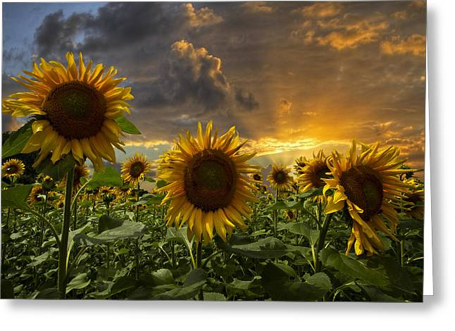 Best Sellers -  - Swiss Photographs Greeting Cards - Glory Greeting Card by Debra and Dave Vanderlaan
