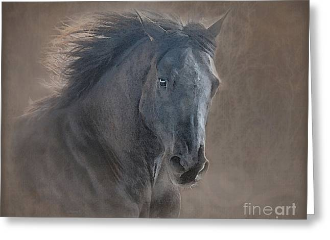 Horse Picture Greeting Cards - Glory Galloping Black Horse Greeting Card by Renee Forth-Fukumoto