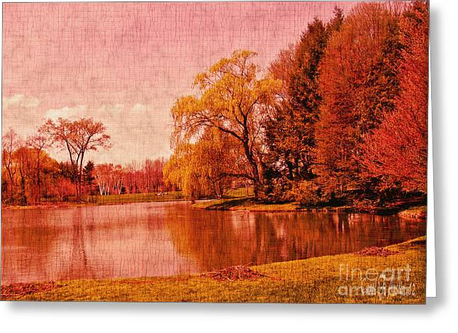 Carol F Austin Greeting Cards - Glory of the Autumn Light Greeting Card by Carol F Austin
