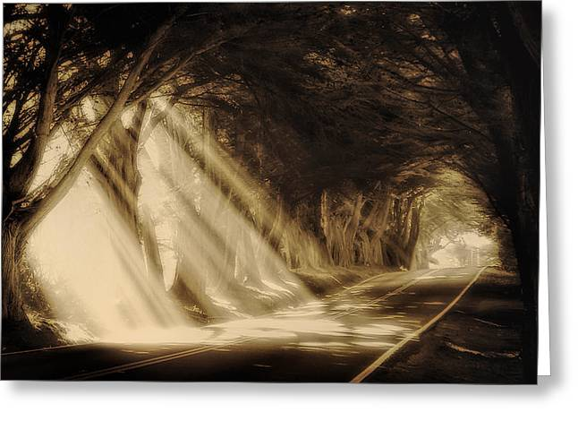 Paradise Road Greeting Cards - Glory Rays Greeting Card by Priscilla Burgers
