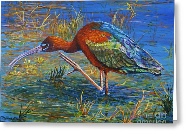 Wildlife Refuge. Greeting Cards - Glossy Ibis Greeting Card by AnnaJo Vahle