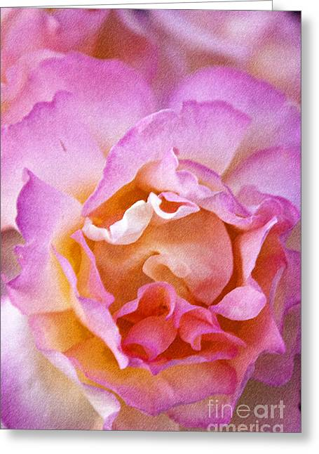 Tropical Greeting Cards - Glow from within Greeting Card by David Millenheft
