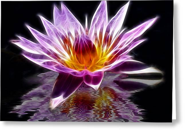 Glowing Lilly Flower Greeting Card by Shane Bechler