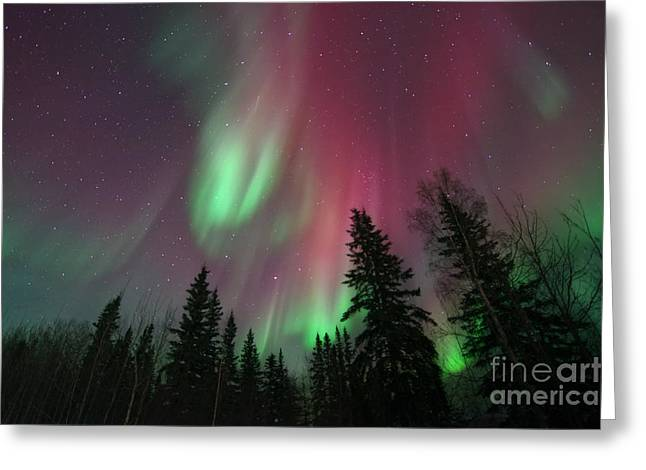 Northern Greeting Cards - Glowing Skies Greeting Card by Priska Wettstein