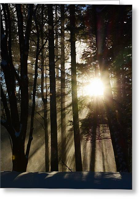 Snowy Day Greeting Cards - Glowing Snow Greeting Card by Tracy Winter